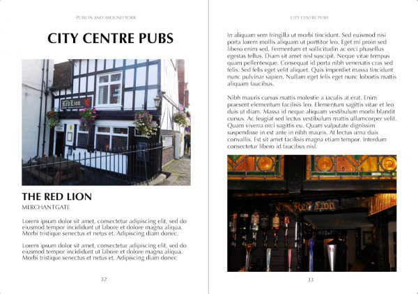 Pubs In York Sample 2