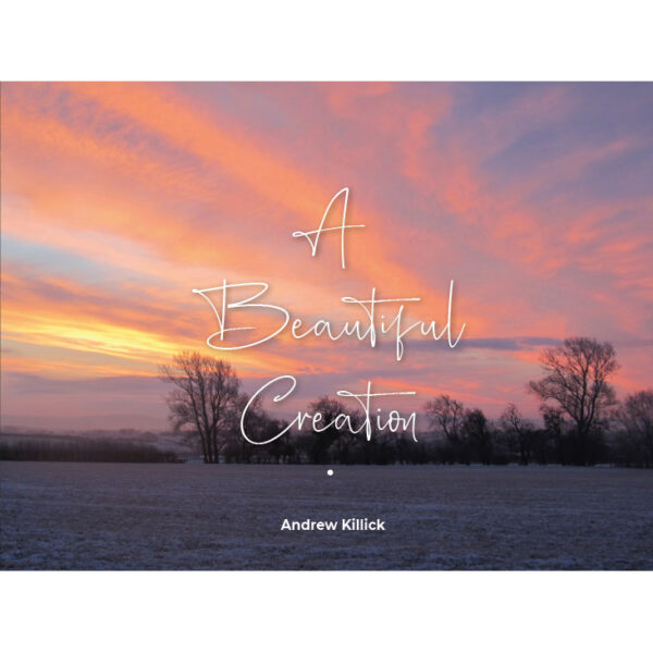 Beautiful-Creation-Cover-sq